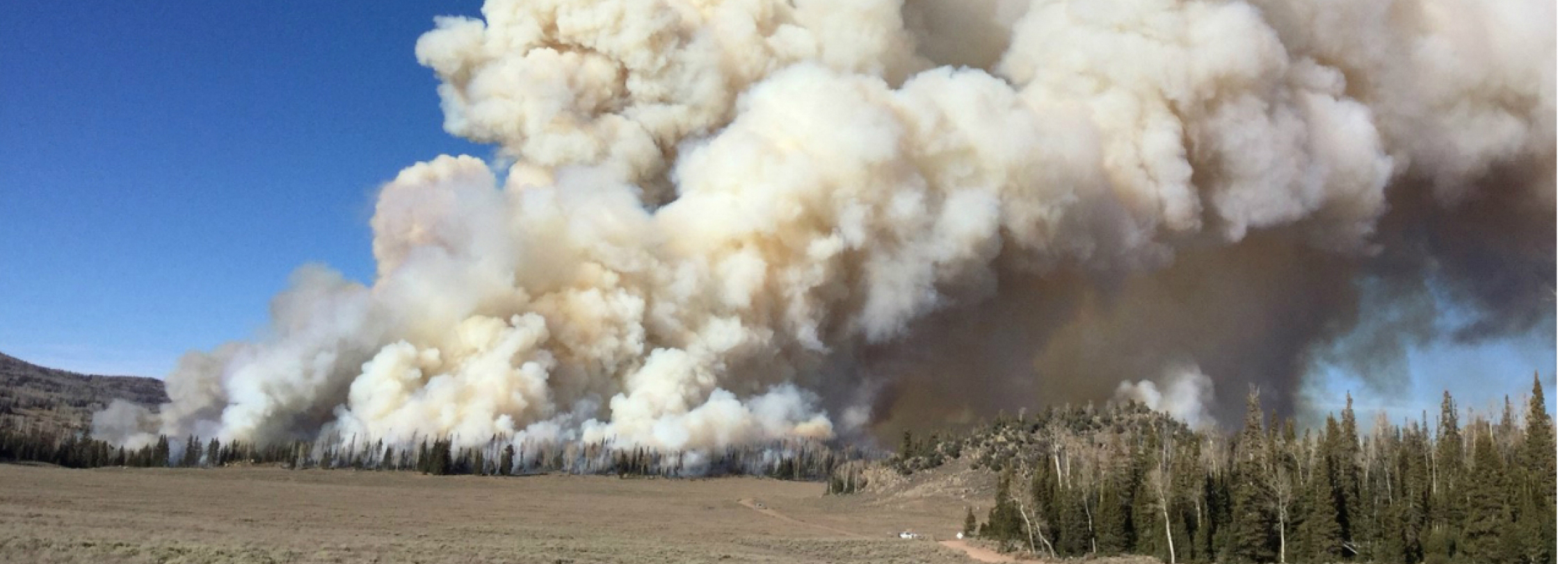 "A huge column of smoke rises from a 2017 ""prescribed burn"" in the Fishlake National Forest in Utah. Forest managers will intentionally and carefully set fires in some sections of forests to restore them to natural conditions."